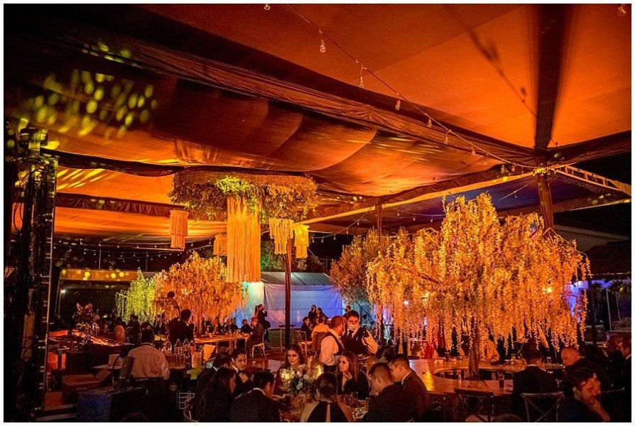 a rboles decorativos y letreros neon para eventos 0003