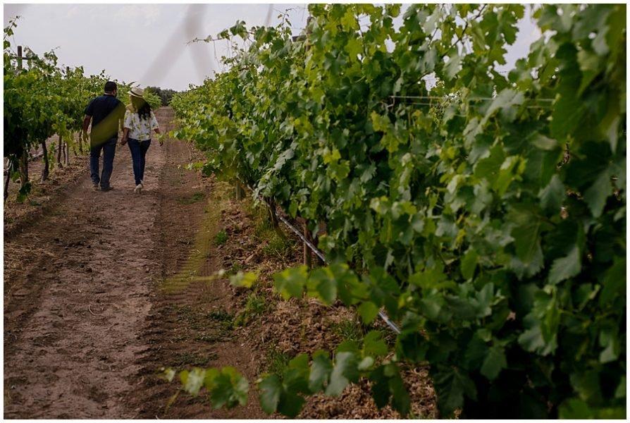 sesion de pareja vin edo cuna de tierra 0070