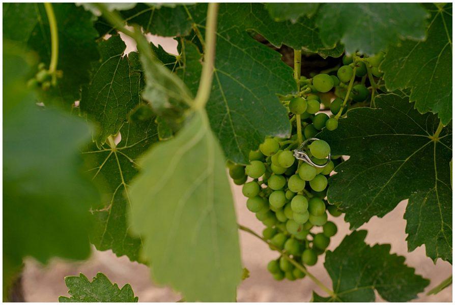 sesion de pareja vin edo cuna de tierra 0098 1